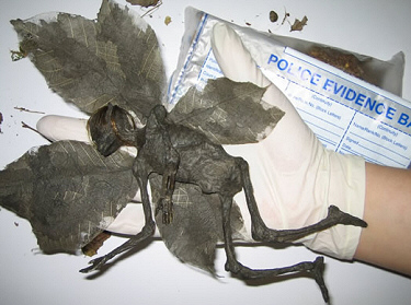 Tinkerbell; killed by a complaint about cold coffee in McDonald's in April 2011